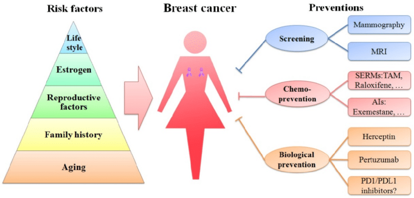 Some Of The Most Common Breast Cancer Risk Factors [ The List ]
