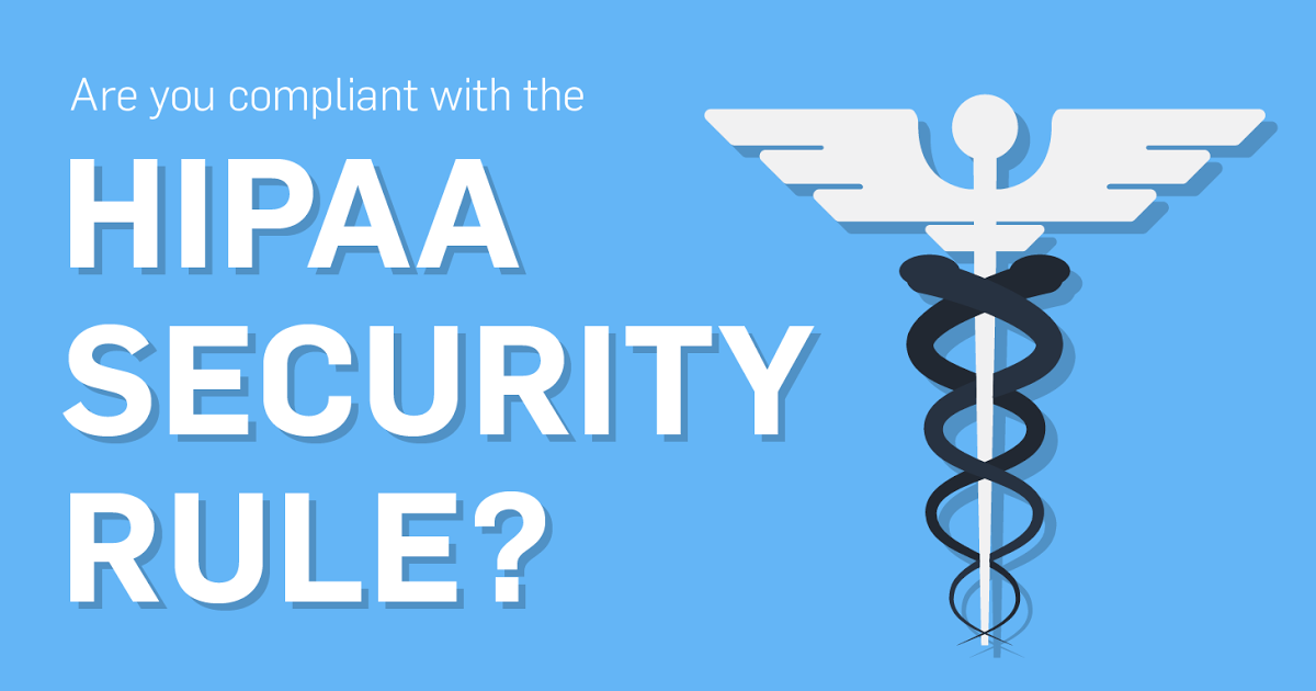 What Is Private Rule and Security Rule in the HIPAA?