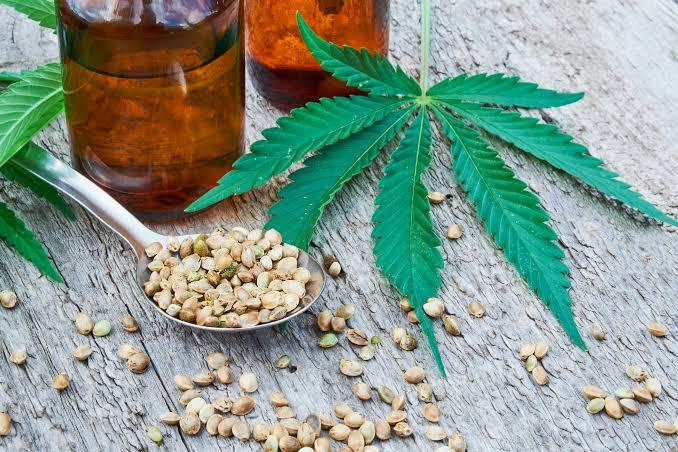 Recent Developments in CBD Oil for Chronic Diseases