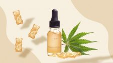 Why Don't Cannabis Sublingual Tinctures Work for Some?