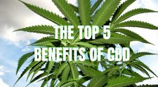 5 Benefits of CBD